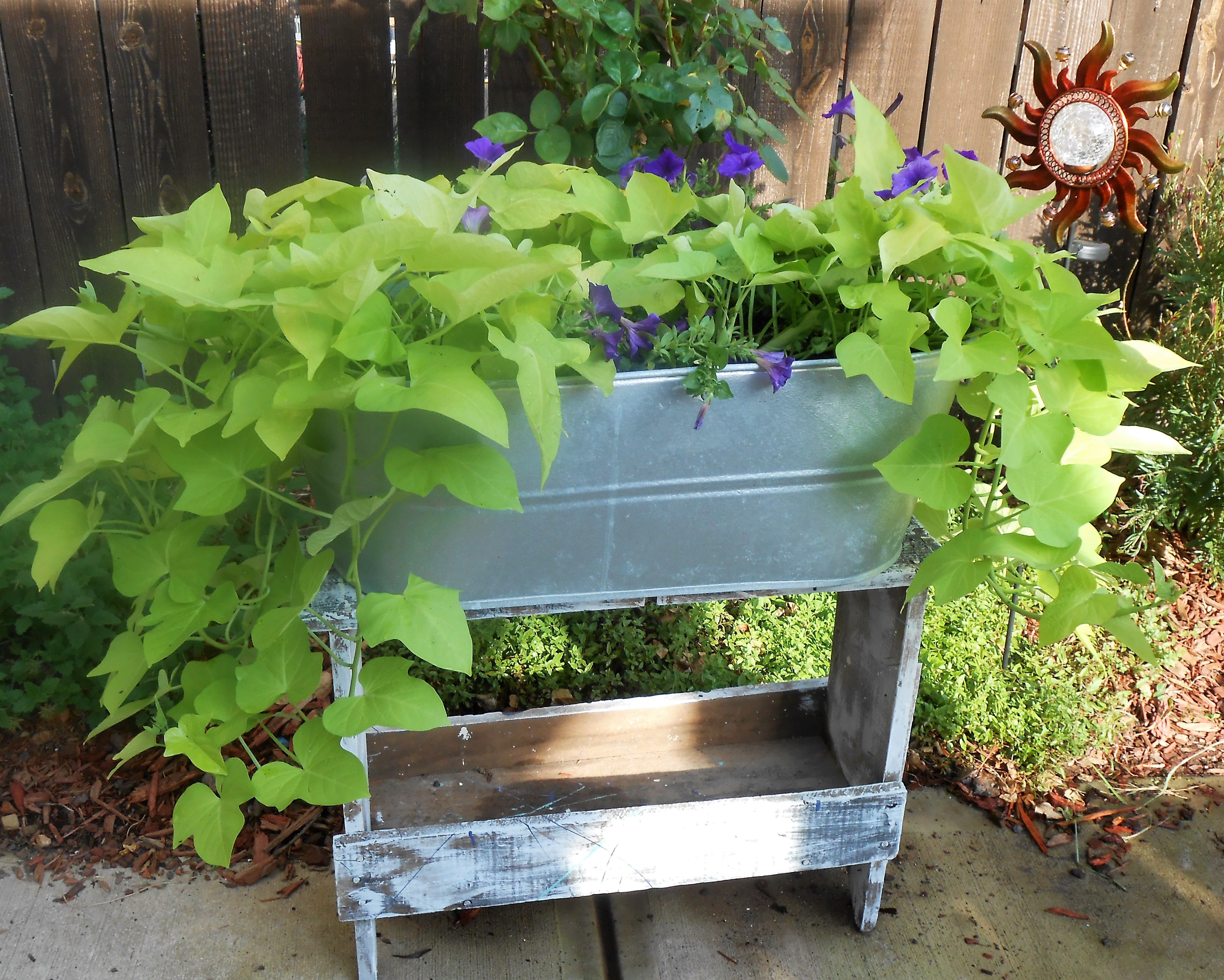 Galvanized Tub for Flowers