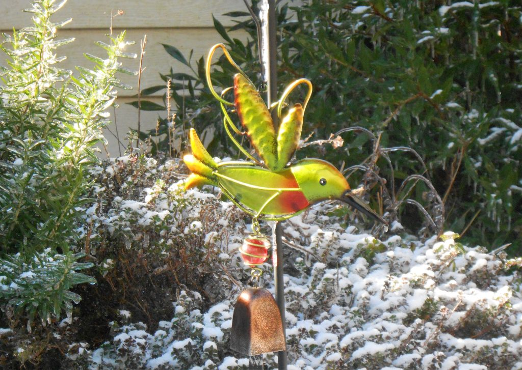 Hummingbird Decor